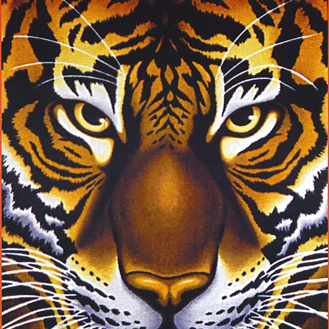 essay on the tyger by william blake Free essay: william blake's the tyger terror, in the eighteenth century, was commonly considered the highest manifestation of sublimity indeed,.